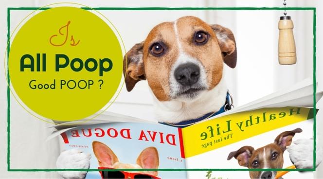 Scoop on Poop (4).jpg